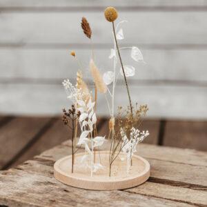 Trockenblumen Display