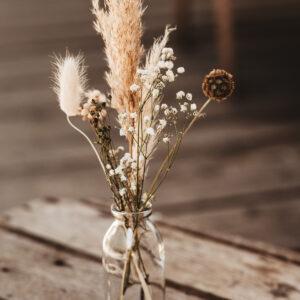 Skabiose Mini Vase