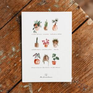 Postkarte mit Gruß