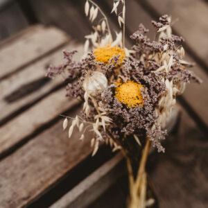 Golden Violet